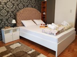 A picture of the hotel: King Marko apartment