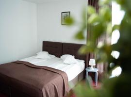 Hotel Photo: Casa Vlasin