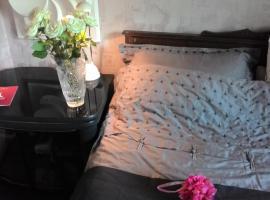 酒店照片: Rooms in Sheremetyevo