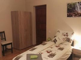 Hotel photo: Borostyán vendégház