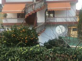 A picture of the hotel: Hostel Villa
