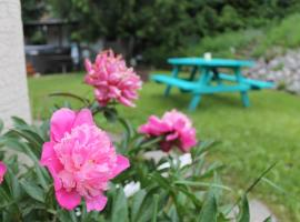 Hotel photo: Revelstoke Mountain Guesthouse