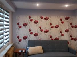 A picture of the hotel: Apartament TOSIA