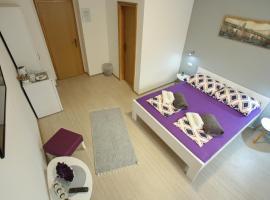 Hotel photo: Guest House Stari