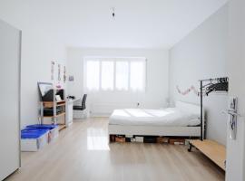 Hotel photo: Appartement spacieux dans le coeur de Lyon