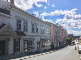A picture of the hotel: Kongens gate 10 rom i bofellesskap