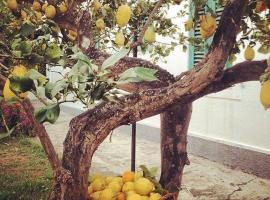 Hotel photo: Il Giardino dei Limoni