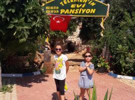 Фотография гостиницы: Telemenin Evi