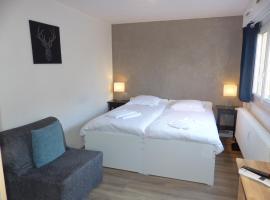 Hotel photo: Danel Strasbourg Neudorf