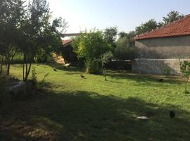 Hotel photo: Toprak camping