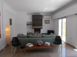 Hotel photo: Athens Ampelokipoi Penthouse