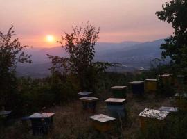 Hotel Foto: Stay Hostel in Elbasan