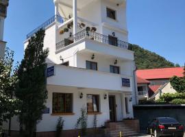 Fotos de Hotel: Pensiunea Vila Europa