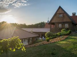 Hotel photo: Guest House Repušnička Klet