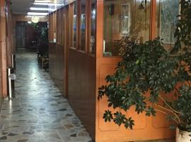 A picture of the hotel: hotel de lujo