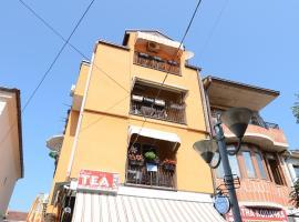 A picture of the hotel: Vila Tea Petrusevski