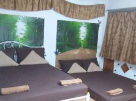 Hotel photo: Star Amir Guesthouse