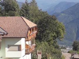 Hotel photo: Roanerhof