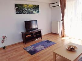 Hotel Photo: Otopeni Residence Apartment