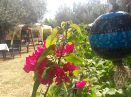 Hotel photo: Assos Orchidee Bungalow