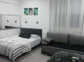 A picture of the hotel: Apartment Centar