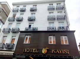 Hotel photo: HOTEL KAYISI