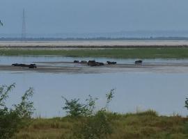 Hình ảnh khách sạn: Koshi Tappu Bird Watching Camp Pvt. Ltd.