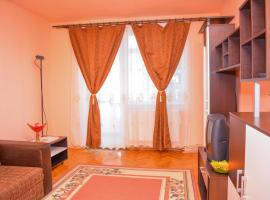 A picture of the hotel: Central Apartment Accommodation Baia Mare