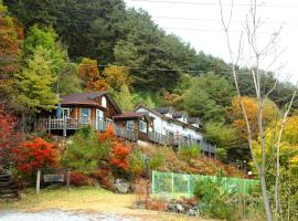 A picture of the hotel: Sechi Pension