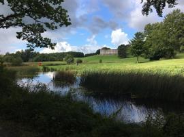 Hotel kuvat: Curraghchase Cottage