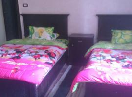 Хотел снимка: Abbas El-Akkad Apartment