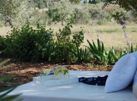 Hotel Foto: Finca Can Cova Camp
