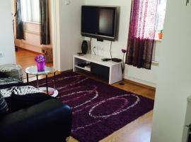 Hotel photo: Apartman DIVNA