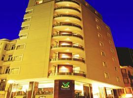 Hotel photo: SV Bussiness Hotel Taksim