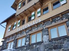Hotel photo: Tauernhaus Appartment