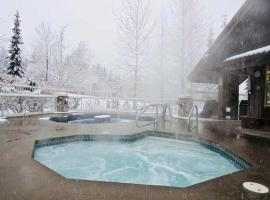 Hotel photo: Whistler Sepearhead Drive Apartment