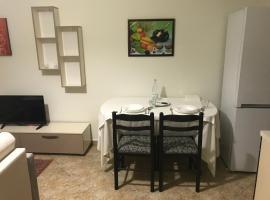 Фотографія готелю: Central apartment