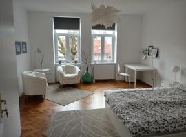 A picture of the hotel: Comfortable city apartment