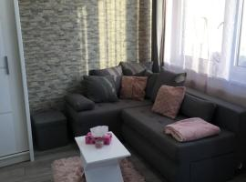 Хотел снимка: Rose Central Apartment