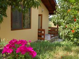 A picture of the hotel: Casa Verde Villa