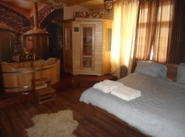 A picture of the hotel: Luxusni Apartmany Stodolni