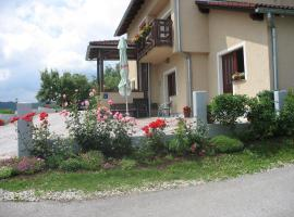 Hotel Photo: House Miletic