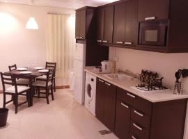 Hotel photo: Luxury furnished Apartment No 203