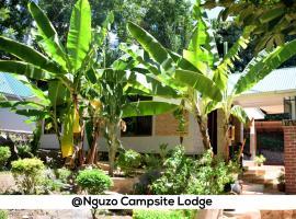Hotel photo: Nguzo campsite lodge