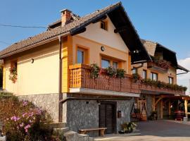Hotel photo: Tourist Farm Škrbina