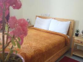 Hotel photo: Hotel Maghni