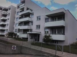 Hotel near Zurych (Kreis 11)