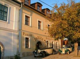Hotel photo: Adler Panzio