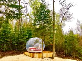 Hotel photo: Bubble tent