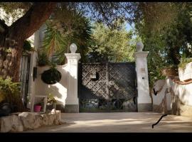 Hình ảnh khách sạn: CASA SOFIA